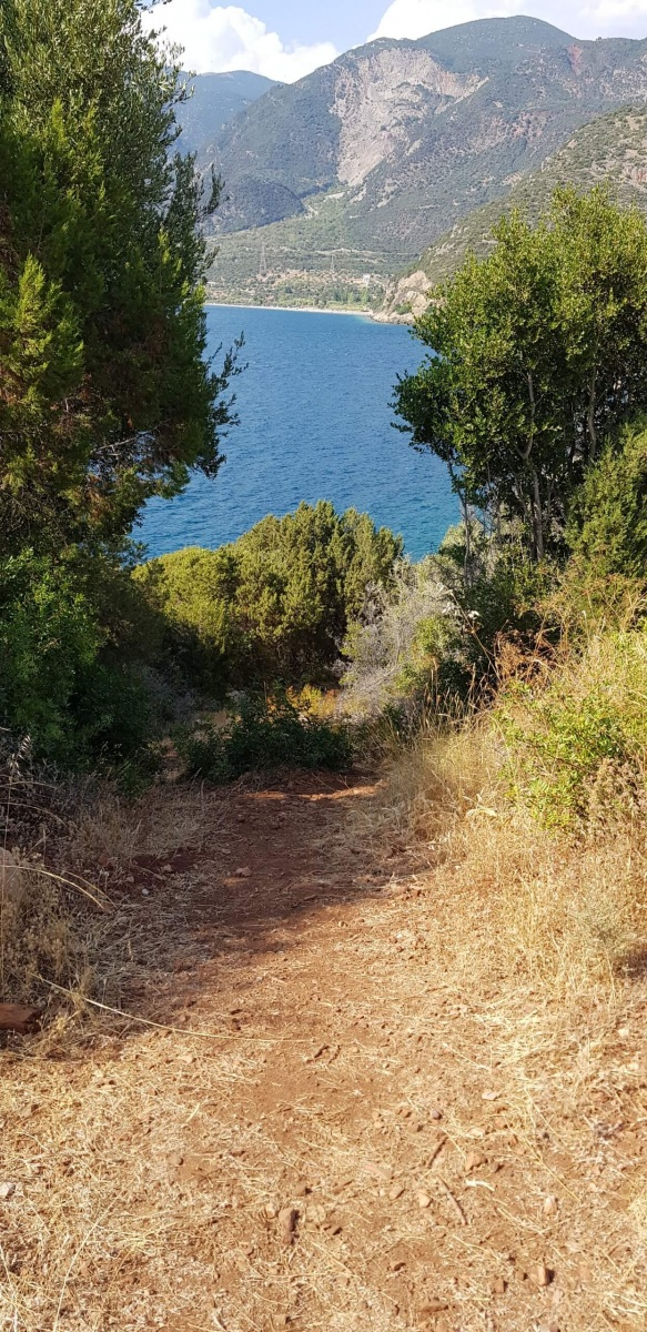 North coast foot path, Trizonia